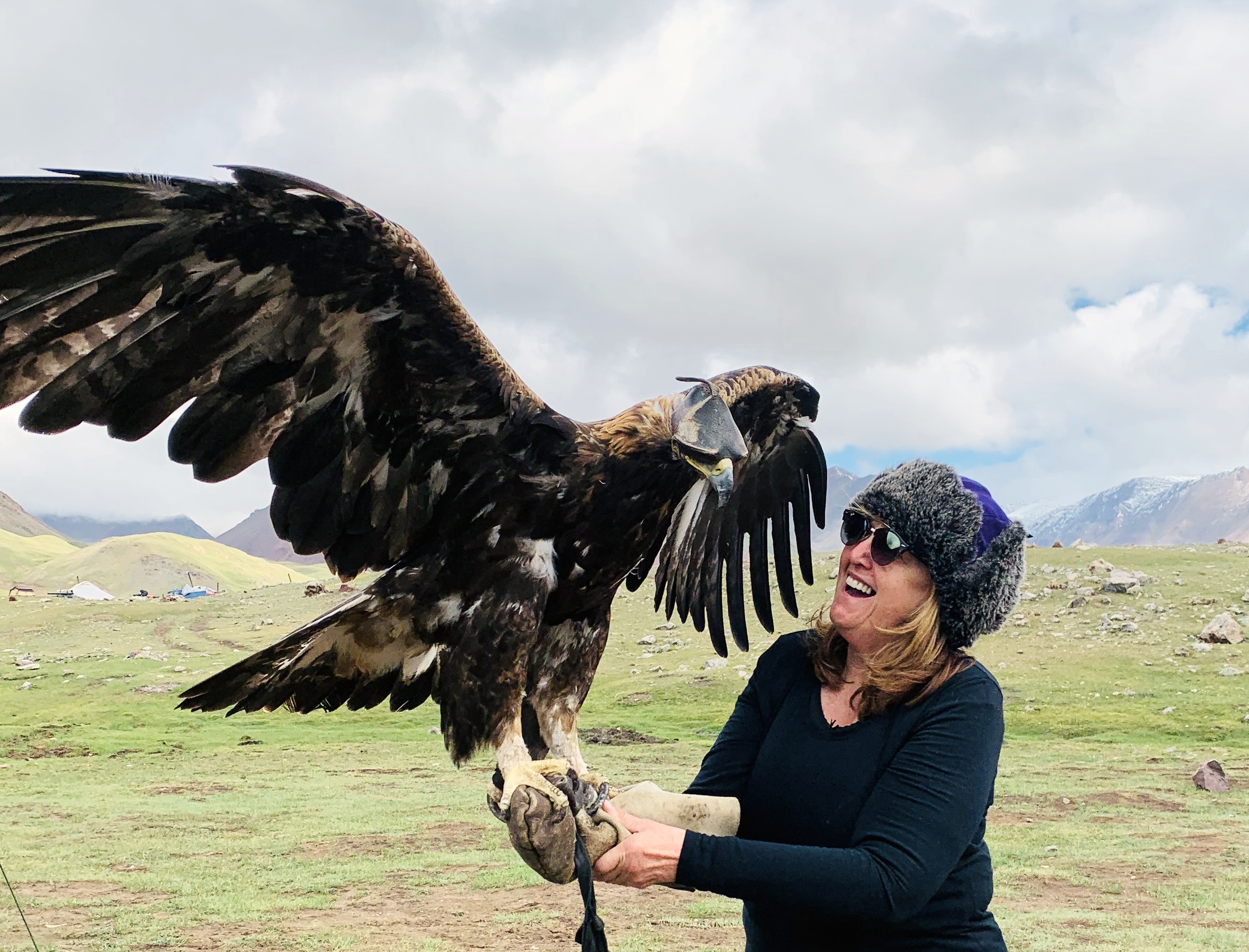 Golden Eagle, Linda, Altai Tavan Bogd National Park